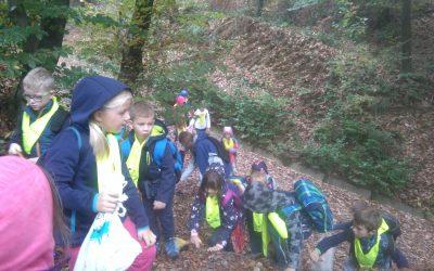 Naravoslovni dan v gozdu za prvošolce